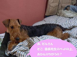 20101115_708820.jpg