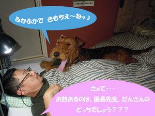 20101115_708823.jpg