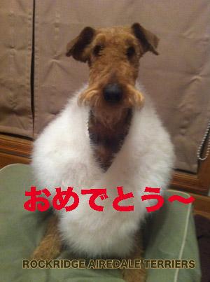 IMG_2663 のコピー.jpg
