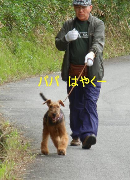 m-4.JPG